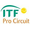 ITF M15 Champaign, IL Men (hard)